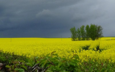 Storm clouds gaitherin oer Aberdeenshire - it's May!!!
